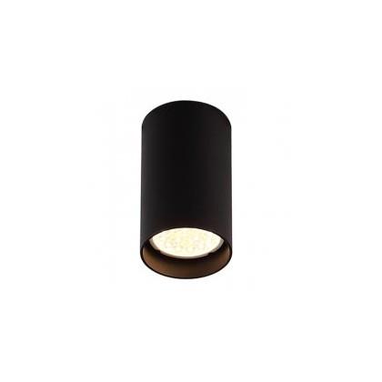 lampy sufitowe pet