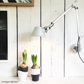 Tolomeo L81 polerowane aluminium - Artemide - lampa ścienna