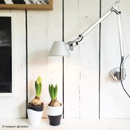 Tolomeo L81 polerowane aluminium - Artemide - lampa ścienna - A025150 + A004800 - tanio - promocja - sklep